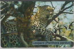 PHONE CARD-NAMIBIA (E47.32.2 - Namibie