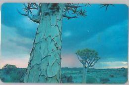 PHONE CARD-NAMIBIA (E47.32.4 - Namibie