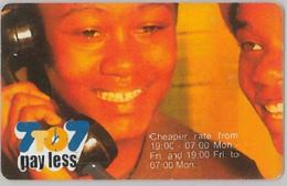 PHONE CARD-NAMIBIA (E47.33.4 - Namibie