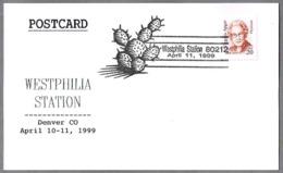 WESTPHILIA STATION - Cactus. Denver 1999 - Cactus