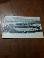 Cartolina Postale 1900, Genève, Le Dimanche à Plainpalais - GE Genf