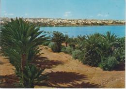 CPSM Sahara Occidental - El Aaiun - Vista Panoramica (Vue Panoramique) - Sahara Occidental