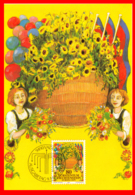 LIECHTENSTEIN  TARJETA PRIMER DIA AÑO  1981  ( EUROPA CEPT 1981 ) - Enteros Postales