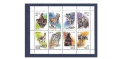 A594. Kyrgyzstan / 1997 / Kirghizistan / Kirghizstan / Kirguistán / Loup / Lobo / Wolf / Faune / Faune / Ursus - Kyrgyzstan