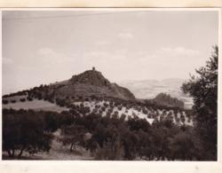Route De MOCLIN à PUERTO LOPEZ 1964 Photo Amateur Format Environ 7,5 Cm X 5,5 Cm ESPAGNE - Lugares