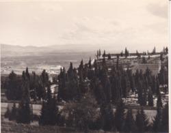 GRANADA GRENADE Le Cimetière 1963 Photo Amateur Format Environ 7,5 Cm X 5,5 Cm ESPAGNE - Lugares