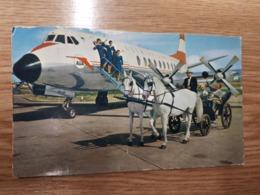 Postcard - Aerodromes, Wien      (27814) - Aerodrome