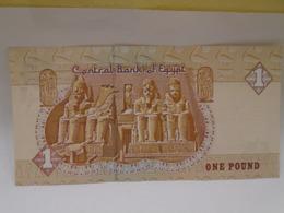 Egypt, One Pound 1991, Beautiful, Crisp, UNC. - Egipto