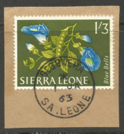 SIERRA LEONE. 1/3d. SEGBWEMA POSTMARK. FLOWERS - Sierra Leone (1961-...)