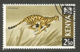 KENYA. 2.50 CHEETAH. USED - Kenya (1963-...)