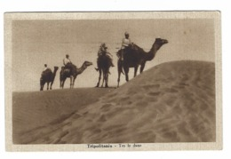 839 - COLONIALE - TRIPOLITANIA - TRA LE DUNE 1920 - Altre Guerre