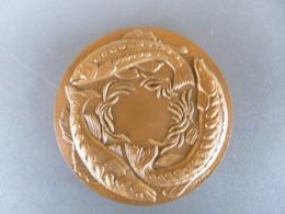 Belle Médaille En Bronze Massif Signée Torcheux - 1987 Année Environnement - Féds Pêche - Club Et Entente Halieutique - Professionnels / De Société