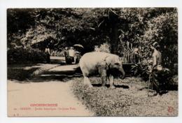 - CPA SAIGON (Viet-Nam) - Jardin Botanique - Le Jeune Toby - Edition A. T. N° 24 - - Vietnam