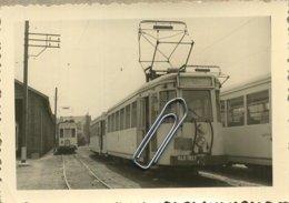 TRAM 41006 :   Evere  1959     ( 9 X 6 Cm) - Photographs