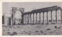 PS / Cpsm 10,5 X 18 Pub Labo LA BIOMARINE . SYRIE. Les Ruines De Palmyre   (+ 4 T.P. SYRIE   ) - Syrie