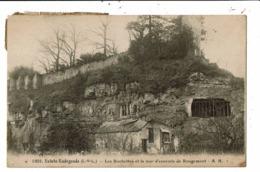CPA-Carte Postale-France -Sainte Radegonde -Les Rochettes Et Mur D'enceinte De Rougemont-VM6650 - Tours