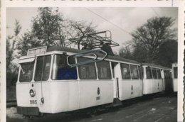 TRAM  9165 :  SPA Motrice   (  Alleur - St. Gilles )         ( 12 X 7.5  Cm ) - Photographs