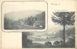 BUSSANG - Pont Sénéchal, Grands Hôtels. - Bussang