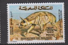 MAROC-1973-N°689**HYENE DE BERBERIE - Maroc (1956-...)