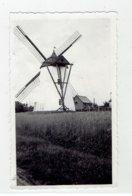 RONSE - Renaix - Kleine Foto 11 X 6,5 Cm - Stenen Molen - Ronse
