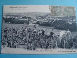 51 - Au Pays Du Champagne - Le Travail De La Vigne - La Vendange - 1906 - Frankreich