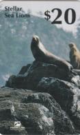 Canada - PTI - Stellar Sea Lions - Canada