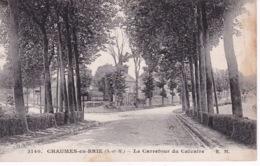CHAUMES EN BRIE(ARBRE) - France