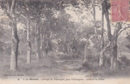 [34] Hérault > Villeveyrac Abbaye De Valmagne Allée De La Diane - Francia