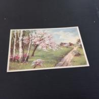 CPA Coloprint SPECIAL No 2225 / Printed In Belgium  En L Etat Sur Les Photos - Fantaisies