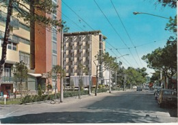 536 - Rimini - Altri