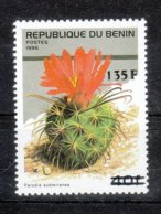 Benin 2000**, Freimarken Mit Überdruck, Kaktus Parodia / Benin 2000, MNH, Definitives With Overprint, Cactus Parodia - Sukkulenten
