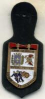 Insigne Sapeur Pompier, 14 CONDE SUR NOIREAU888 - Pompiers