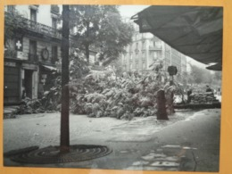 ARBRE ABATTU   LIBERATION DE PARIS GUERRE WW2 PHOTO DE PRESSE 24 X 18 Cm PHOTO PRESSE LIBERATION - Guerre, Militaire