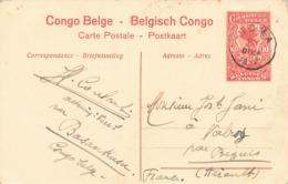 Entier Postal Congo Belge Cachet 1917 Belgisch Congo Sur Cpa Monts Ruwenzori - Stamped Stationery