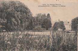 Rare Cpa Arc En Barrois L'étang Et Le Château - Arc En Barrois