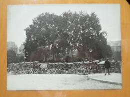 BARRICADE SACS DE SABLE PAVES LIEU ? LIBERATION DE PARIS GUERRE WW2 PHOTO DE PRESSE 24 X 18 Cm PHOTO PRESSE LIBERATION - Guerre, Militaire