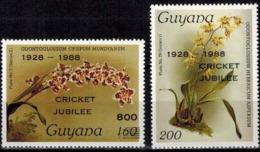 MBP-BK3-583 MINT ¤ GUYANA 1988 2w OUT OF SET OPDRUK CRICKET¤ ORCHIDS OF THE WORLD - FLEURS - BLÜMEN - BLOEMEN - FLORES - - Orchids