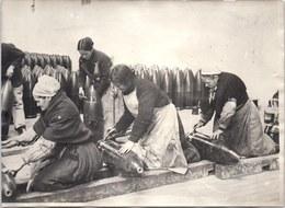 PHOTO ORIGINALE 1914-1918 [17X13] Travaille Des Femmes De Bretagne Aux Obus - Guerra, Militari
