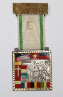Médaille De Marche_044_1979-1980, Europa, Europe Unie, Hergenrath Lontzen Eupen, Liechtenstein - Belgique
