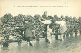 (85) L'Aiguillon-sur-Mer : Les Bouchots Et La Cueille Des Moules (animée) - Autres Communes