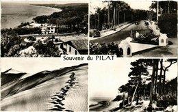 CPA Souvenir De PILAT (336297) - France