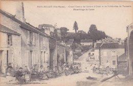 52 -  FAYL-BILLOT - Ecole Nationale D'Osiériculture Et De La Vannerie Décorticage De L'osier A Voir - Francia