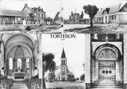 18-TORTERON- MULTIVUES - Frankreich