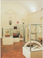 Nièvre :  CHATEAU -  CHINON :  Musée  Du  Septennat  , Grande  Salle - Andere Gemeenten