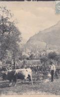 [38] Isère > Allevard  Les Bains Un Coin Du Village Et Les Glacier De Gleysin - Allevard