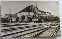 CPSM 61 Argentan Plusieurs Trains En Gare Le Dépôt Des Machines SNCF Années 50-60 - Argentan