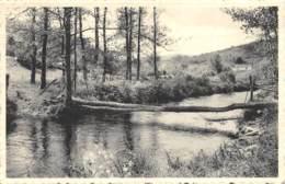 Erezée - Pont Rustique Sur L'Aisne - Ed. V. Garnir - Erezée
