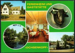 C8006 - TOP Rotta Kr. Gräfenhainichen Betriebsferienheim VEB Zentralwerkstatt - Verlag Bild Und Heimat Reichenbach - Wittenberg