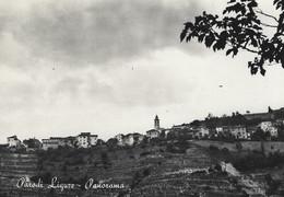 PARODI LIGURE (ALESSANDRIA)  -F/G   B/N LUCIDA (190919) - Italia