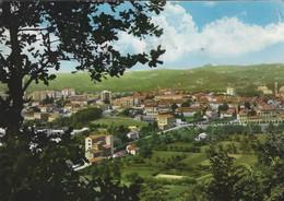 OVADA (ALESSANDRIA)  -F/G   ACQUARELLATA (190919) - Italia